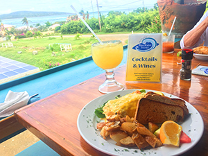 Blue Water Terrace restaurant st croix virgin islands