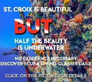 Discover SCUBA Diving with St Croix SCUBA dive shop